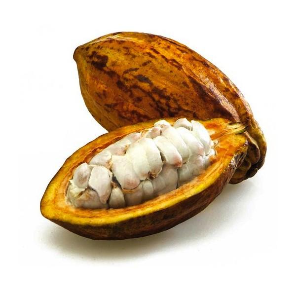 naturlicher-kakaobutter.jpg